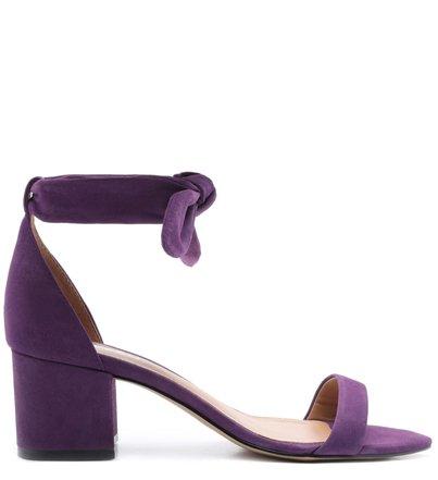 Sandália Roxa Nobuck Salto Bloco Lace Up Real Purple